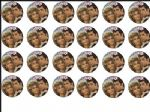24 x Grease Movie  Rice Wafer Paper Cake Bun Toppers